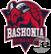 Saski Baskonia